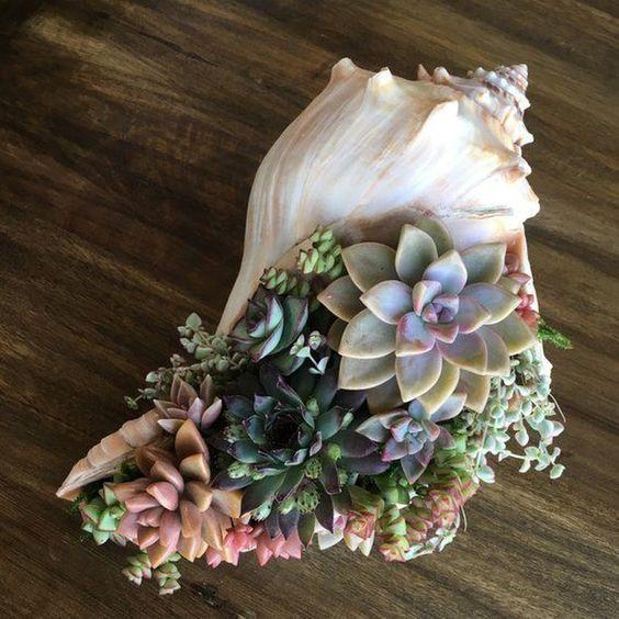 artesanato conchas mar 12