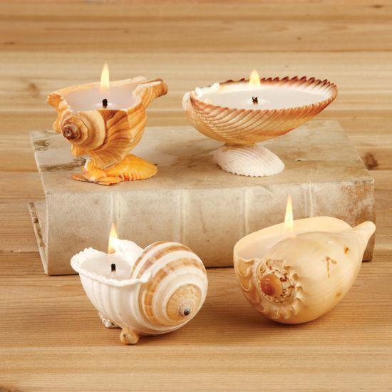 artesanato conchas mar 6