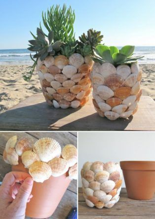 artesanato conchas mar