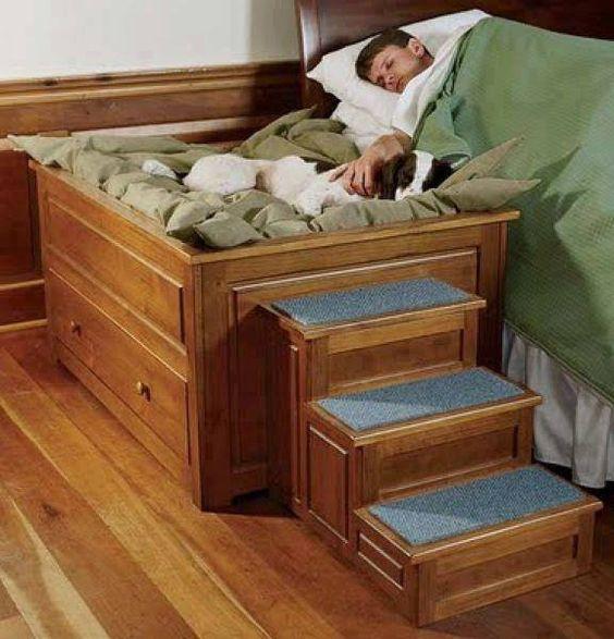 camas para cachorros originais