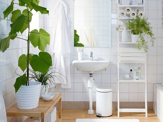 casa feng shui banheiro