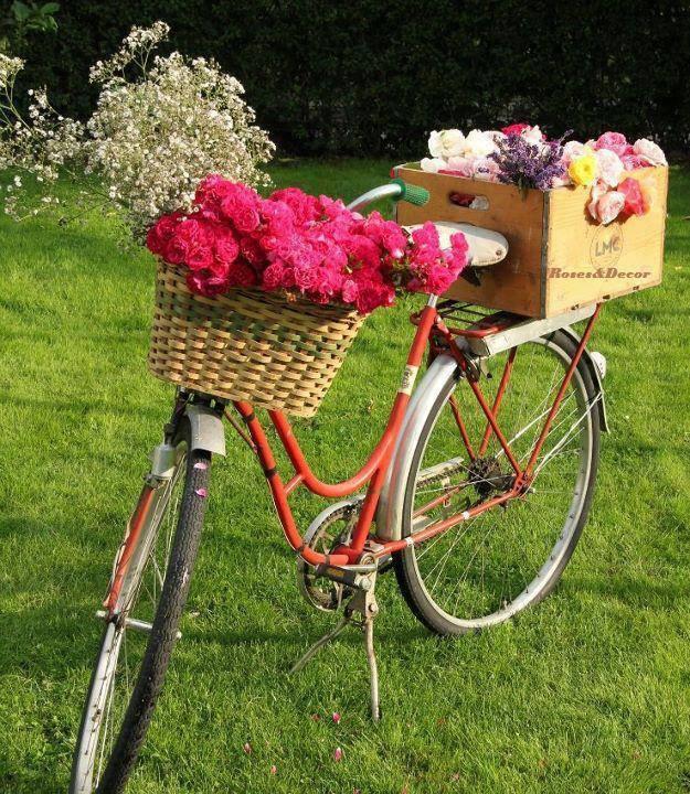 decoraçao de jardim com bicicleta