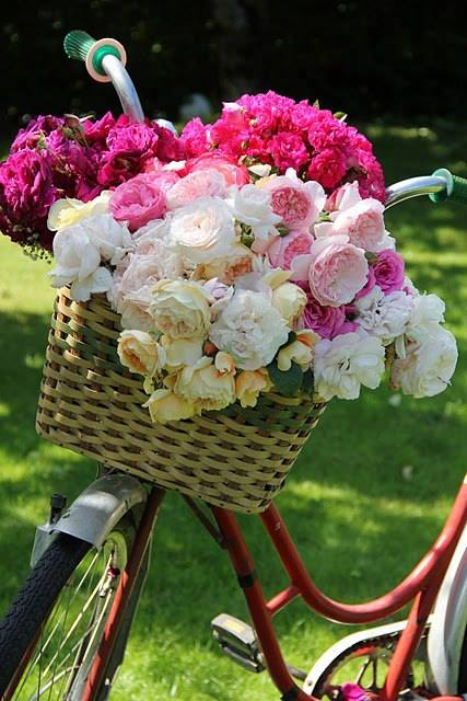 decoraçao jardim bicileta flores
