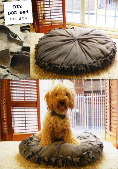 diy cama para cachorro