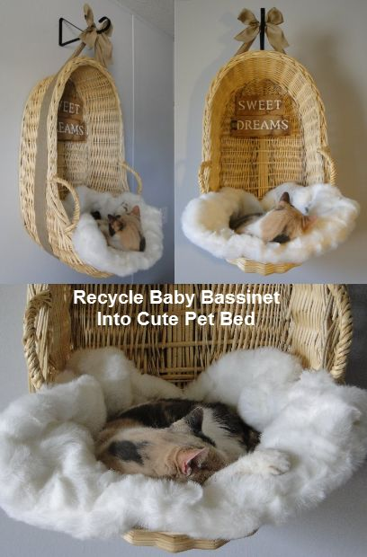 diy cama reciclada para gatos