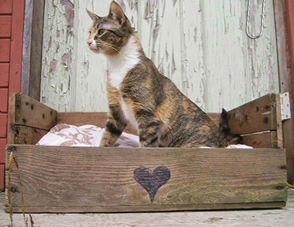 diy casinha gato 3
