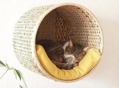 diy casinha gato 7