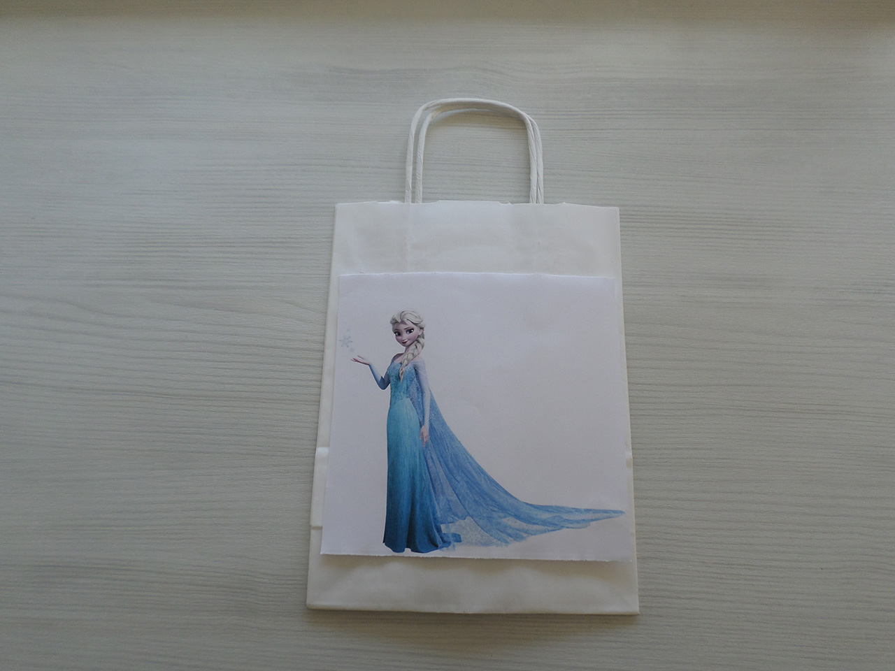 diy-saco-frozen2