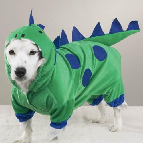 fantasia cachorro dinossauro