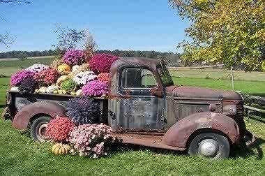 ideias artesanato jardim 8