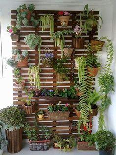 ideias de jardim vertical