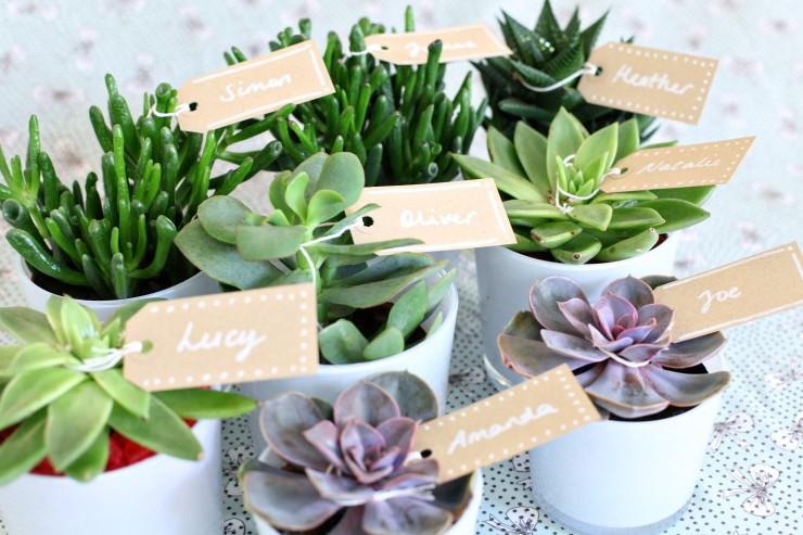 ideias decoracao casamento ecologico 4