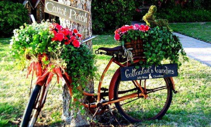 ideias originais para o jardim