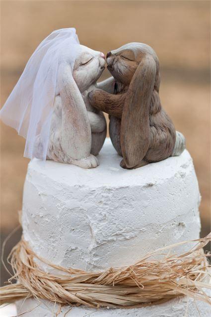 noivinhos-casamento-animais-coelhos