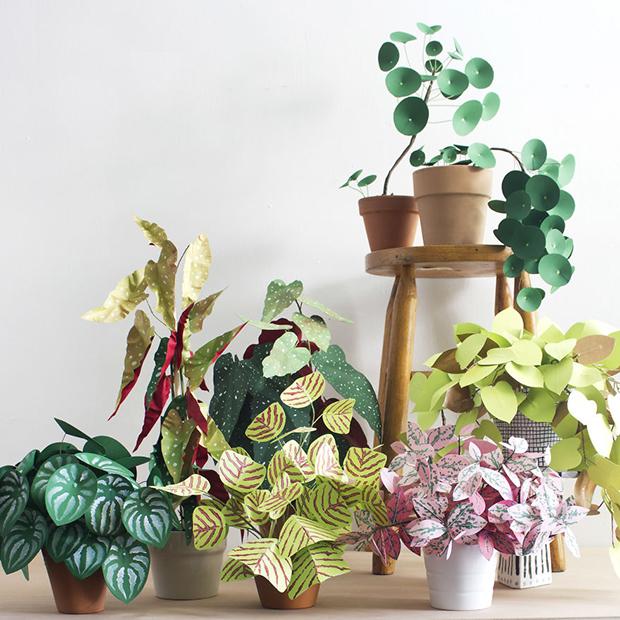 plantas papel decoracao 2