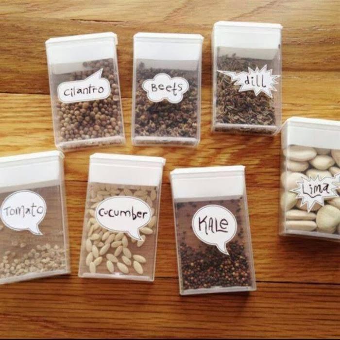 reciclar caixa tic tac sementes